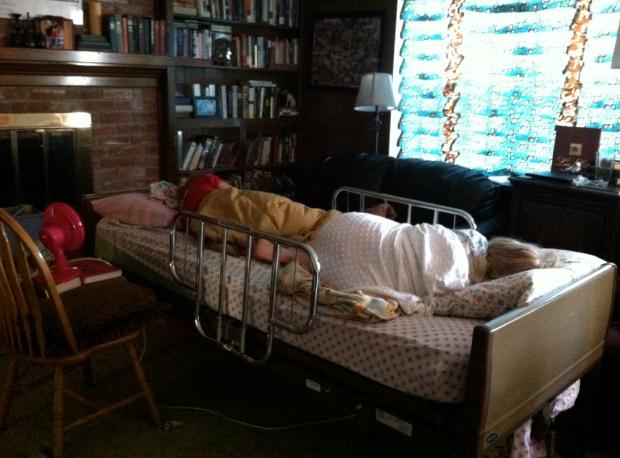 Hospital Bed in Living Room